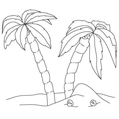 how to draw palm trees fun drawing lessons for kids adults - Palm Tree Beach Coloring Page