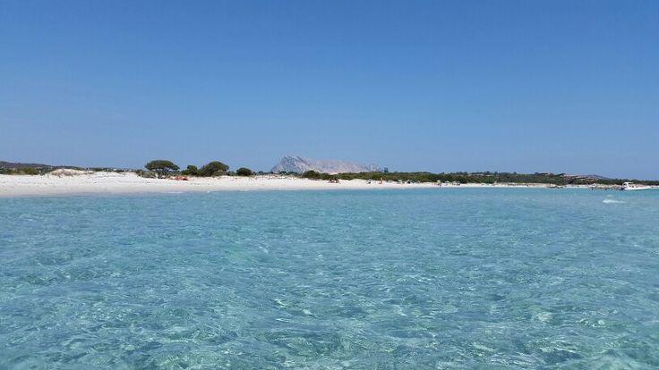 Sardegna Mon Amour!