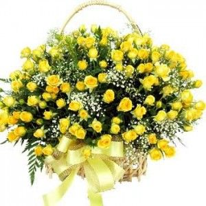 200 Yellow Roses Basket.  Buy this mesmerizing 200 yellow roses basket at just Rs 4,999.