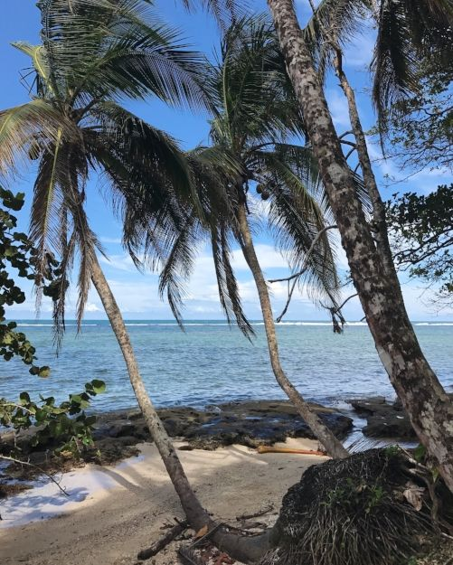 Costa Rica: Storybook — cones'n'rods // travel to Costa Rica, explore Costa Rica, Caraibes travel, Caraibes cruise, what to do in Costa Rica, Costa Rica tips, Costa Rica recommendations