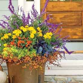 25 Fresh and Easy Summer Container Garden Flowers Ideas