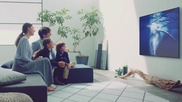 "🎁 #SONY TV New Year ⊙ffer 2️⃣️0️⃣️1️⃣️8️⃣️ বছরের শুরুতেই #SONY BRAVIA টেলিভিশনে চলছে New Year Discount 45% পর্যন্ত ছাড়। 3 বছর Full TV রিপ্লেসমেন্ট গ্যারান্টি, সাথে O% ইন্টারেস্টে EMI কিস্তি সুবিধাতো থাকছেই।(০৭ জানুয়ারী পর্যন্ত) ☛অর্ডার করুন ☎ 01705430045, 01716115783 💻SONY Smart LED▰Internet+WIFI+Full HD ✔️32''W602D=Offer Price=31000 | MRP-40500 ✔️40""W650D=Offer Price=43000 | MRP-58000 ✔️43''W750E=Offer Price=53500 | MRP-72000 ✔️48''W650D=Offer Price=62500 | MRP-78000 ✔️49''W750E=Offer…"