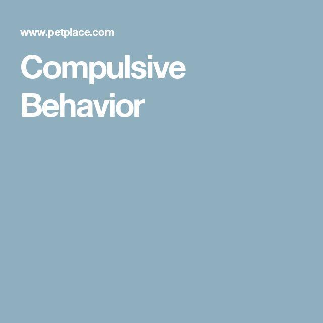 My Dog Wont Stop Licking Carpet: 1000+ Ideas About Compulsive Behavior On Pinterest