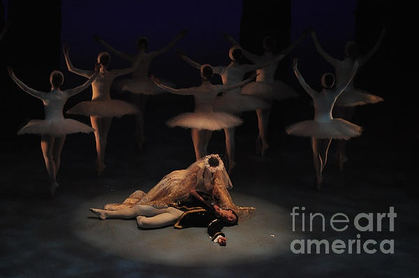 This was taken during the full dress rehearsal performance of Swan Lake by the Ballet Jorgen Canada dancers at the Markham Theatre in Ontario, Canada. It is the death scene.