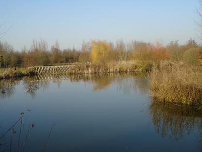 The Lakes @ Thorney Lakes