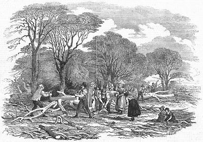 #Farming. agricultural pictures-lopping #timber, #antique print, 1846,  View more on the LINK: 	http://www.zeppy.io/product/gb/2/401226589333/