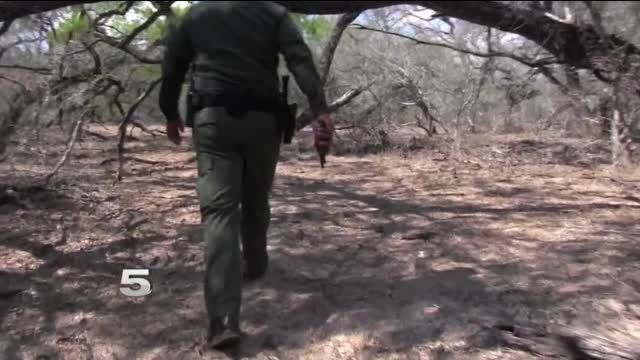 The Border Patrol is reporting a severe spike in sex offenders sneaking into the U.S. According to the feds, illegal immigrant sex offenders have been caught in every corner of the Rio Grande Valley.