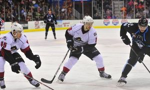 Groupon - Lake Erie Monsters Hockey Game at Quicken Loans Arena on February 1 or 8 (Up to 66% Off). Two Seating Options Available. in Quicken Loans Arena. Groupon deal price: $12