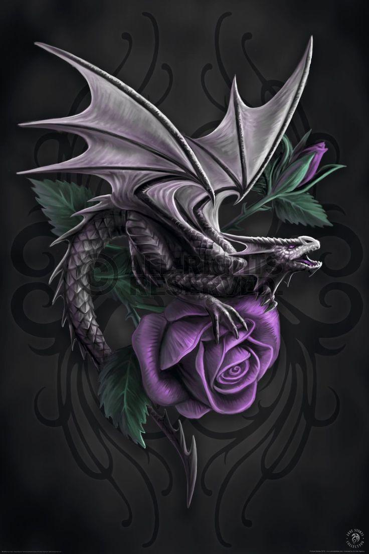 Anne Stokes Art | XENOS Poster: Anne Stokes - dragon beauty online te koop. Bestel je ...