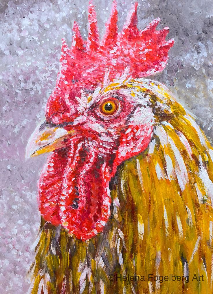 """This is a Swedish hen breed called """"Skånsk blommehöna"""""""