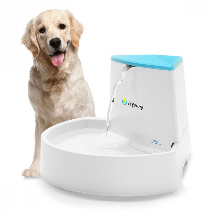 Dog Fountain Pet Fountain Automatic Water Dispenser for Dogs Cats Cat Fountains  #Unbranded