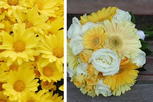 Love for white/yellow daisey bouquet