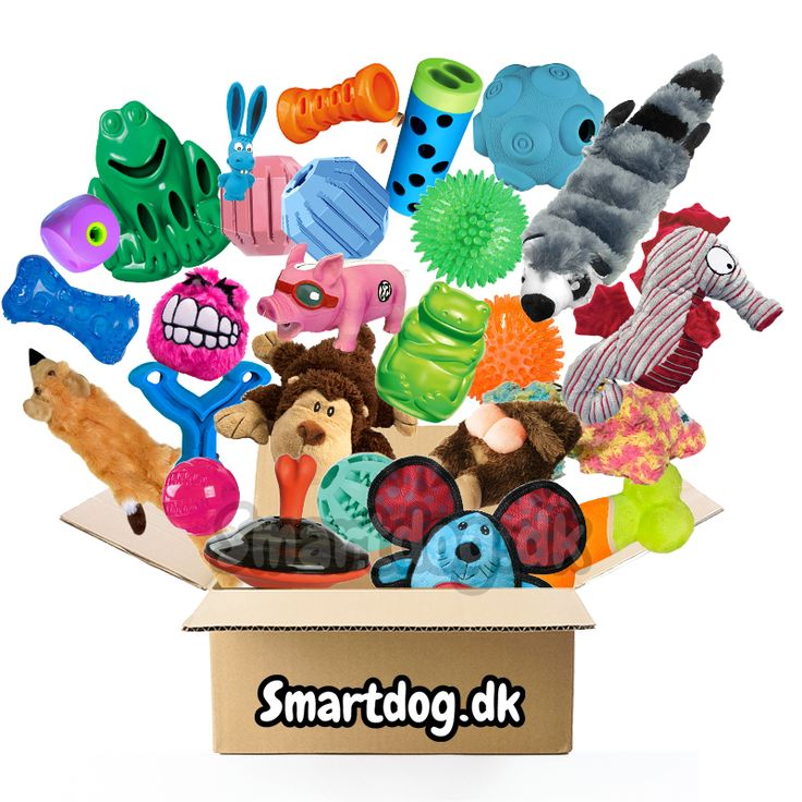 Legetøjspakke til hunde → Billig pakke til alle hunde