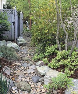 A gently meandering path offers planting pockets. Even in this narrow side yard, there is room for a few small shrubs and trees.