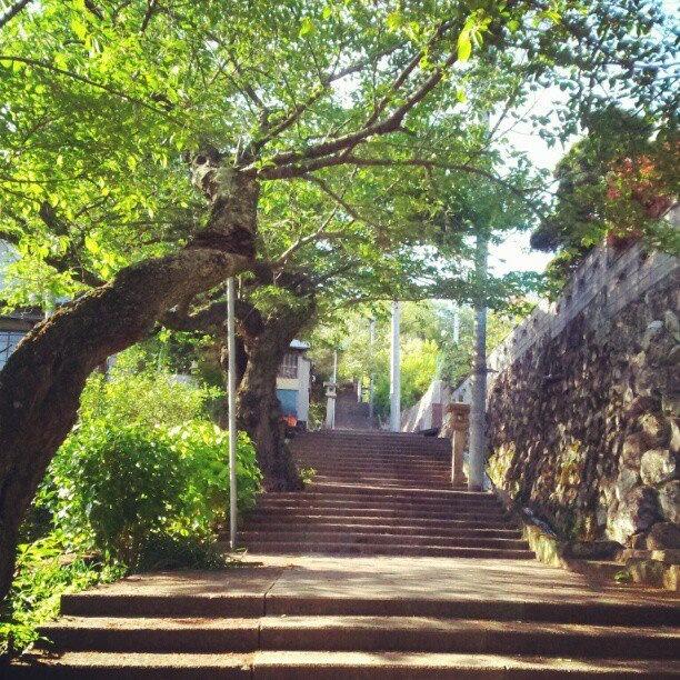 伊豆山への階段