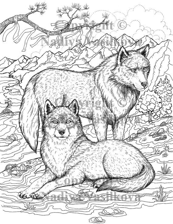 printable coloring page jpg adult colouring page instant download only art printable illustrations magic totem wolf family - Color Book Printable