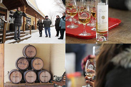 Une petite expédition sur la route des vins de glace des Cantons-de-l'Est organisée par Kava Tours est une façon fort sympathique de découvrir des produits de chez nous. #Quebec #cidre #vin