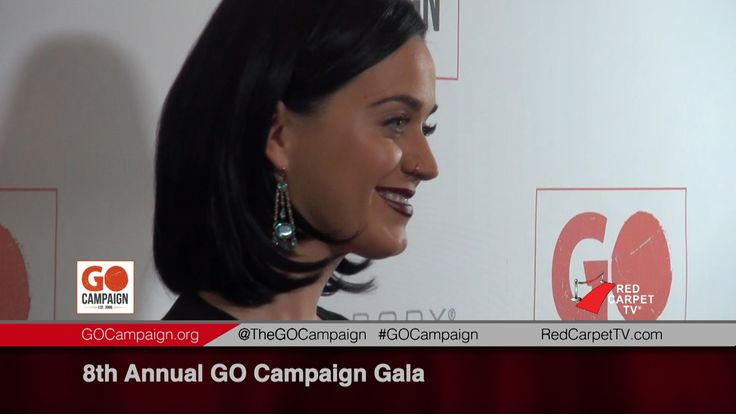 8th Annual GO Campaign Gala 2015 Scott Fifer talks about Rob's Fans