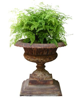 Large 19th Century Cast Iron Garden Urn   Hollyhock | Antique, Vintage U0026  New Furnishings