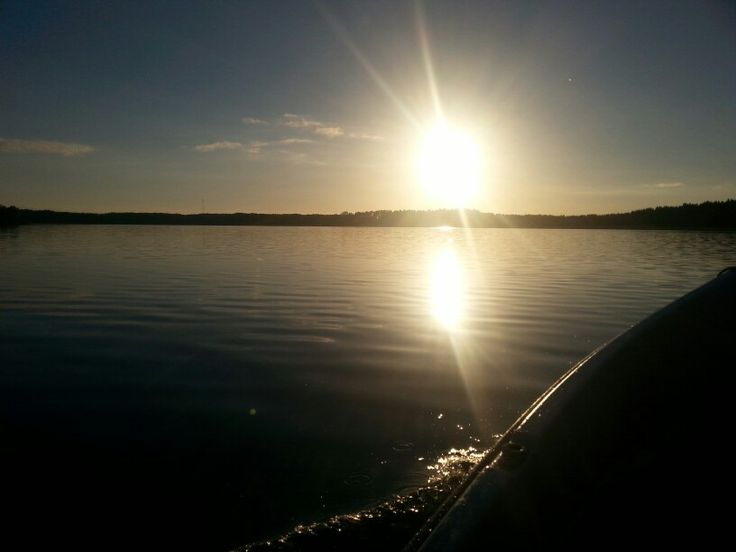 Evening sun ☀