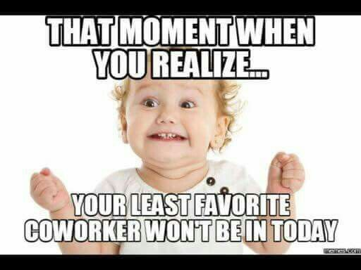 Best 25+ Work memes ideas on Pinterest Funny work humor, Funny - how to call out of work