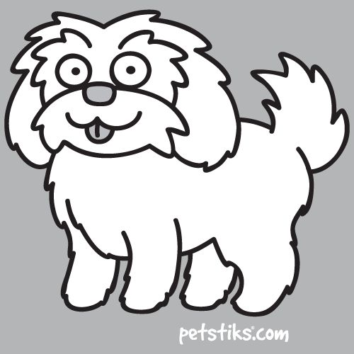 Shih Tzu Dog - Thumbnail