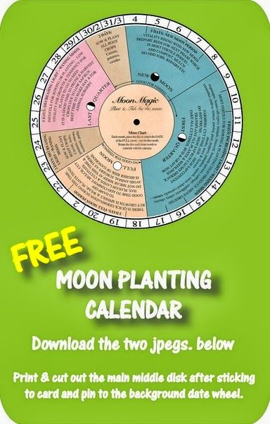 Gardening by The Moon & A Free Moon Planting Calendar. Gardening by the moon is an age-old formula and applies generally to regions where the climate is favorable. #gardeningbymoon