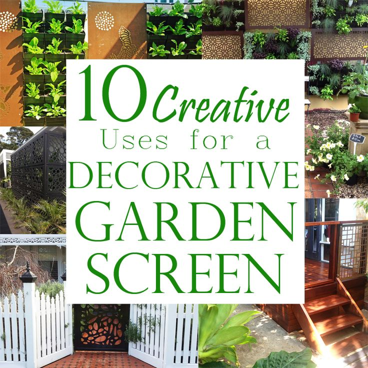 10 Creative Uses for a Decorative Garden Screen on the QAQ blog, featuring some known and lesser known ways to use decorative screens in and around your garden! #gardenscreens #garden #homeimprovement
