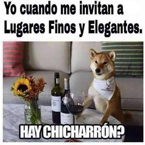 Memes divertidos: Cuando voy a lugares finos →  #memesdivertidos #memesenespañol #memesparafacebook #Memestumblr #Memeswhatsapp