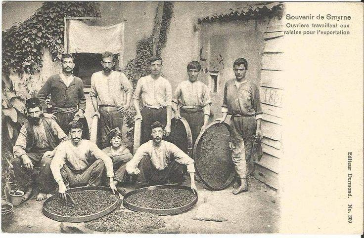 İzmir -Kuru üzüm işletmeleri