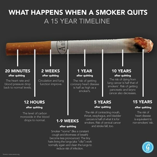 Did you know that just 1-9 weeks after you quit smoking, the little hairs, or cilia, that line your lungs begin to work normally again to keep your lungs clear from infection? And after 15 years, an ex-smoker's risk of heart disease will be equivalent to that of a non-smoker? Inspiring stuff!