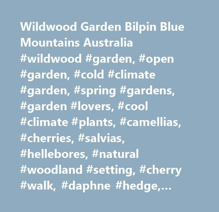 Wildwood Garden Bilpin Blue Mountains Australia #wildwood #garden, #open #garden, #cold #climate #garden, #spring #gardens, #garden #lovers, #cool #climate #plants, #camellias, #cherries, #salvias, #hellebores, #natural #woodland #setting, #cherry #walk, #daphne #hedge, #waterfall, #ponds, #lake, #sculptures, #bilpin, #blue #mountains, #powells #road, #bells #line #of #road, #cafe, #tearoom, #coffee #with #a #view, #nursery, #plants…