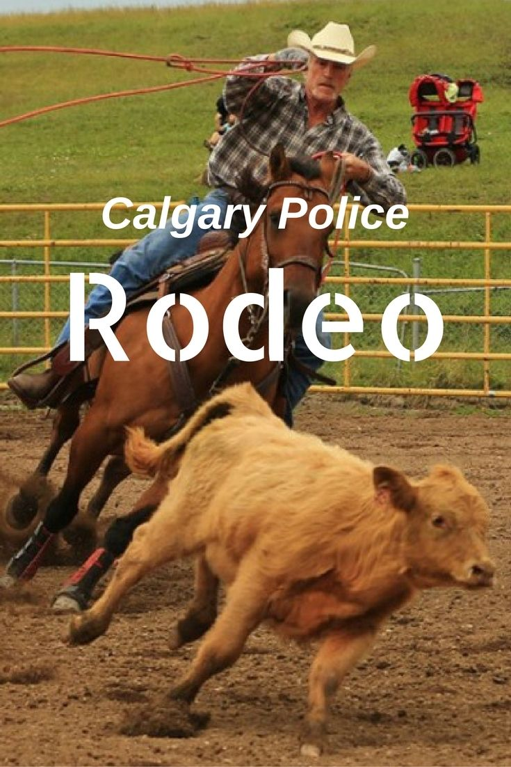 Calgary Police Rodeo: Fantastic family fun for a worthwhile cause