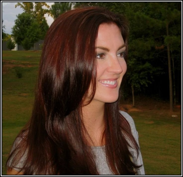 Chestnut brown with red highlights