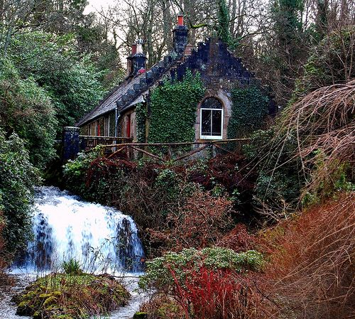 Oh, can I please come and stay here while I work on my next novel? It's perfect. Calm, beautiful, and that waterfall!