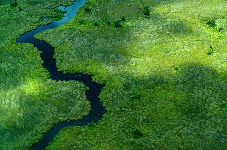 Δέλτα του ποταμού Οκαβάνγκο στη Botswana Πηγή: www.lifo.gr