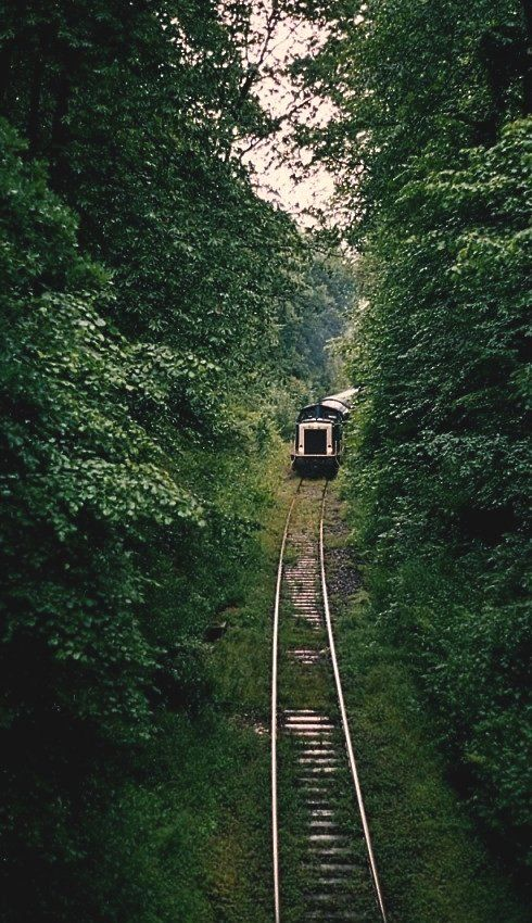 Train path in the forest Michelbach, Germany | by Oliver Münk