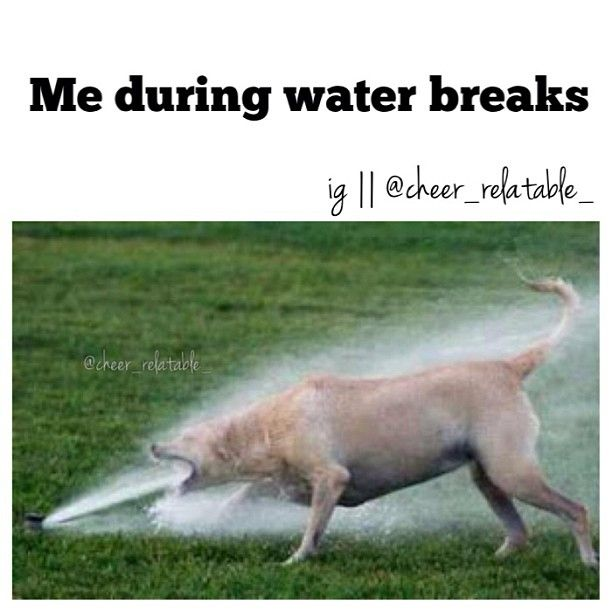 Except riders don't get water breaks, but when I'm done with a lesson in the summer, drain a whole bottle in 5 seconds flat