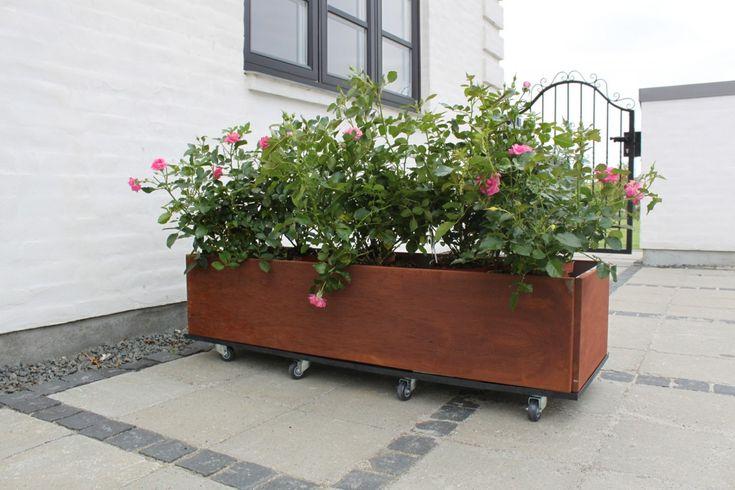 Planteringslåda-med-hjul-i-rostent-järn-och-roser-avlång.jpg (1200×800)