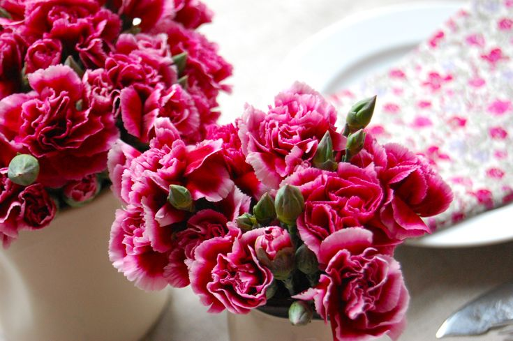 budget-friendly-pink-carnations