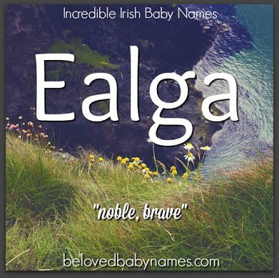 "Ealga, as a part of the phrase Innis Ealga, meaning ""the noble island"", is another poetic way to refer to Ireland. The pronunciation for Ealga is given as ""ale-ga"". This would be a bold choice but a really cool middle name."