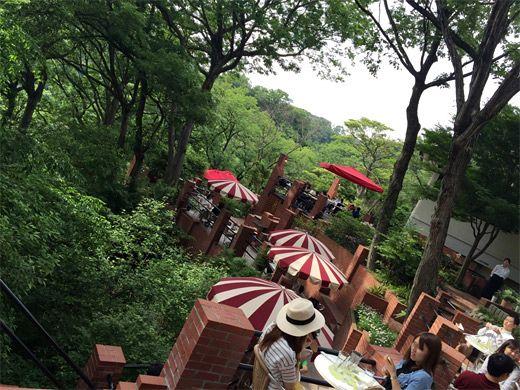 Cafe#kamakura#鎌倉#樹ガーデン#天空カフェ