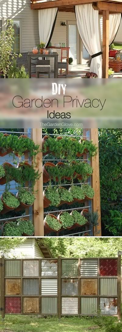 DIY Garden Privacy Ideas Love the idea of adding a curtain to a pergola.