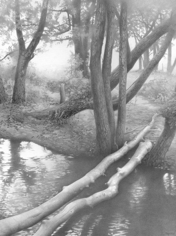 pencil drawing river tree http://hative.com/50-amazing-pencil-drawings/