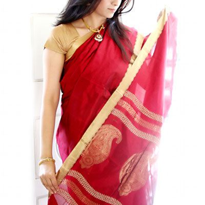 urban pari ethnic saree collection