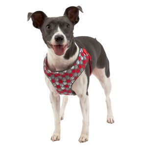 how to put on a dog harness top paw