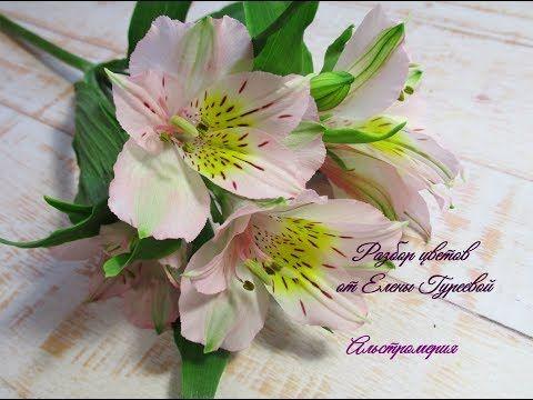 Альстромерия. Разбор цветка.Видеоразбор цветов от Елены Гуреевой. - YouTube