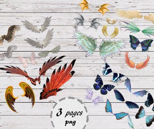 Angel wings clip art   butterfly wings от ArtBoutiqueButterfly
