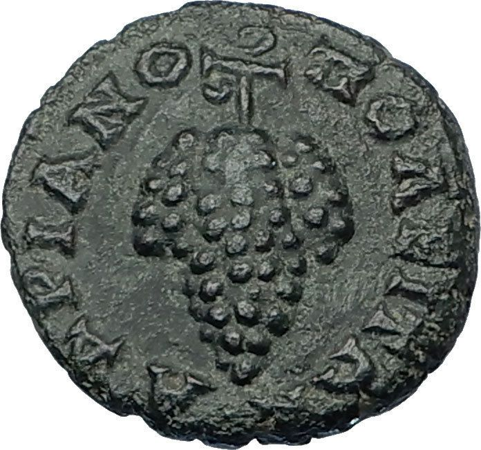 CARACALLA 198AD Hadrianopolis Thrace Authentic Ancient Roman Coin GRAPES i65596