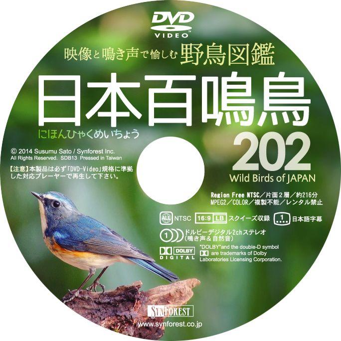 DVD『日本百鳴鳥 202』Disc Label - Graphic Design (by Yuji Kudo) 撮影:佐藤 進 © 2014 Susumu Sato / Synforest Inc.